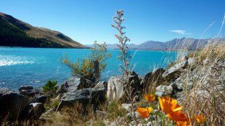 Neuseeland2