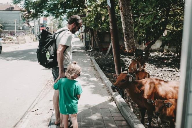 Kuehe in Bali